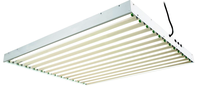 T5 Grow Light Fixtures Find All The Information About