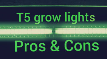 T5 grow light pros and cons